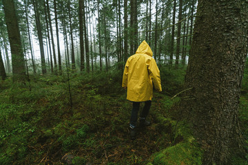 man in yellow rain jacket walks in to the spooky and foggy forest