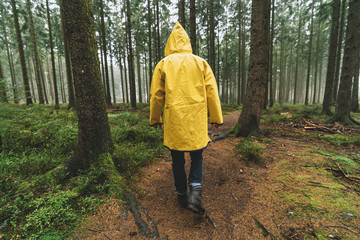 hiker with yellow raincoat walks in to the forest at autumn