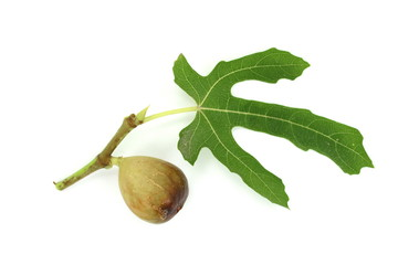Fig fruit with green leaf isolated on white. Clipping Path
