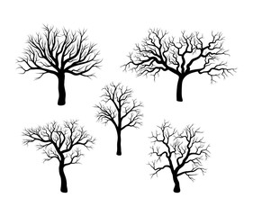 bare tree winter set design isolated on white background