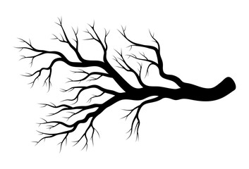 bare branch winter design isolated on white background