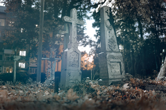 Old tombstones ruin in autmn forest, cemetery in evening, night, moon light, selective focus, halloween concept design backgrond, fog, blue toning