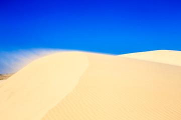 les dunes du vietnam