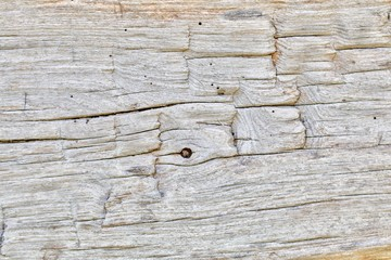 Old Gray Wood Plank