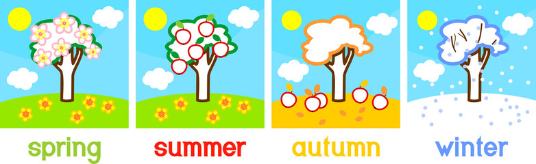 Coloring page. Four seasons apple tree. Life cycle of tree with titles