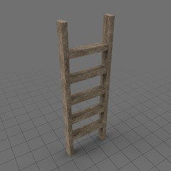 Wooden ladder 1