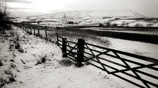 Pendle hill captured from Aitken wood path.