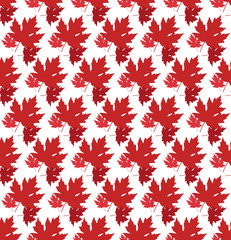 drawn autumn background with beautiful leaves . Seamless pattern. Red maple leaves, Vector isolated or white background