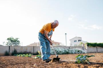 Senior man working on farmland with hoe