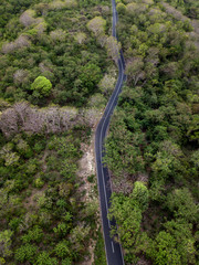 Indonesia, Bali, Aerial view of road and forest
