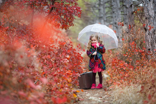Cute little girl playing with fallen golden leaves. Happy child walking in autumn park.  Cute girl with an old suitcase and an umbrella in her hand on a footpath in the autumn forest during the rain.