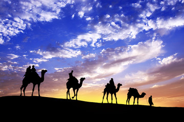 caravan Walking with camel through Thar Desert in India, Show silhouette and dramatic sky