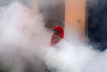 A woman covers her face amid fumes emitted from fumigation work carried out by a municipal worker (unseen) at a residential locality in New Delhi