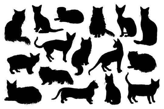 16 hand drawn cat silhouettes