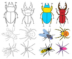 isolated, insects, beetles, set of sketches, coloring book