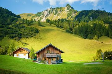 Fototapeta Drewniane domki na tle górskiej łąki obraz