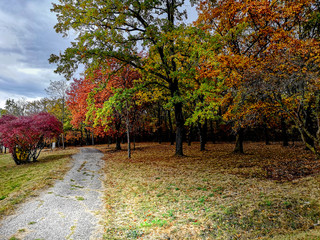 Beautiful autumn landscape in the park after rain with amazing colors. Memorial park Sumarice, Kragujevac, Serbia.