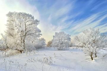 Magic of winter. Khabarovsk, far East, Russia.