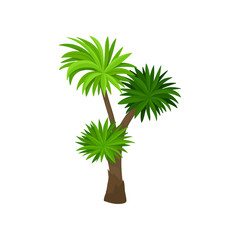 Palm tree with green fan shaped leaves. Plant of tropical forest. Natural landscape element for mobile game. Flat vector icon