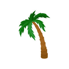 Big palm tree with green leaves and brown trunk. Natural landscape element. Flat vector for postcard or poster