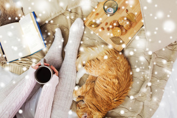Fototapete - pets, hygge and winter concept - woman with coffee, book, cookies and red tabby cat sleeping on blanket at home over snow