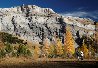 People take pictures of larches in front of the Quille du Diable mountain on warm autumn day in Derborence