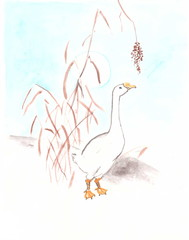 Drawing with watercolors: white goose under the moon on the lake.
