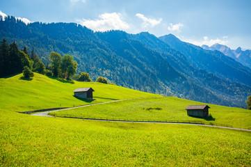 Górski krajobraz z trawą i domkami