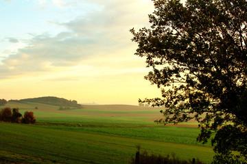 Peaceful countryside scene at sunrise