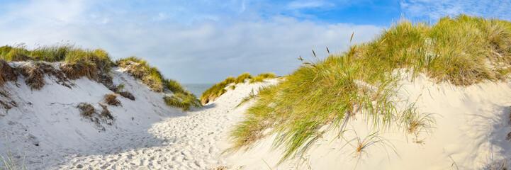 Printed kitchen splashbacks North Sea Weg zum Strand auf der Insel Amrum