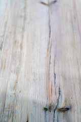 Texture of old wooden board with boughs.