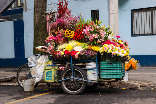 Flower Cart on the Street of Mexico City (Side View)