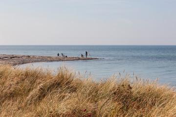 Angeln auf der Insel Fehmarn