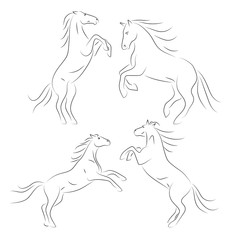 Beautiful black line horses on hind legs on white background. Set of vector graphic dynamic icons animal.