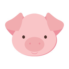 Pig art illustration