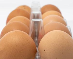 Pack of ten eggs