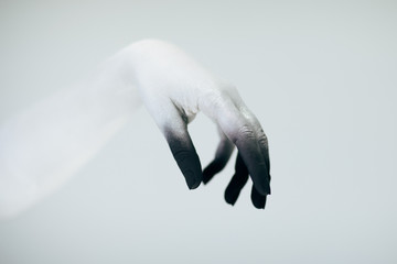 Creepy Halloween monster hand with white and black make up in front of white background