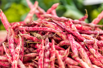 Macro closeup of many red or pink shelled cranberry whole beans in shells in farmer's market or Italian street food stall in Rome, Italy