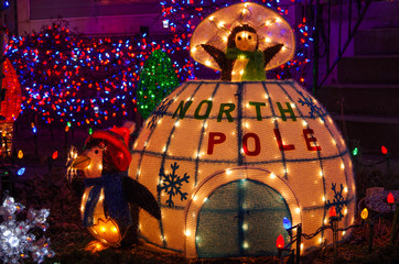 North Pole Igloo and Penguin Christmas Lights Display