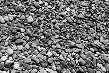 pebble beach - Maine - B&W
