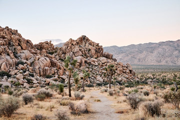 A rocky desert landscape at sunrise
