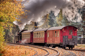 Eisenbahnromantik im Selketal Harz Selketalbahn