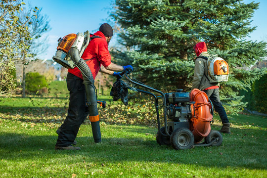 Two men in red shirts are blowing leaves in the fall on a perfect green lawn, one of them uses a push leaf blower. Collection that highlights the various landscaping tools, seasonal jobs and tasks.