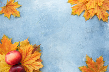 Beautiful autumn leaves with apples on color background