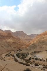 Poster Algérie Wonderful colors of desert