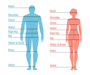 Woman and Girl Size Chart. Human front side Silhouette. Isolated on White Background. Vector illustration