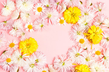 Frame of white asters flowers on a pink background with copy space.
