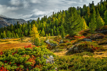 Lagauntal im Herbst
