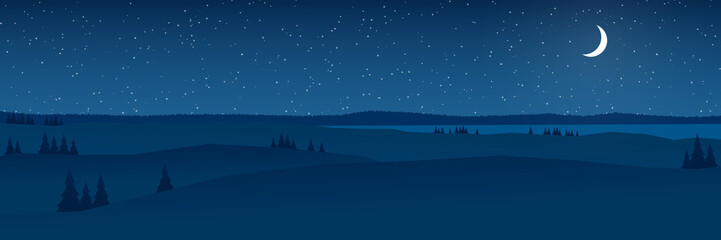 hills at night landscape flat design panorama