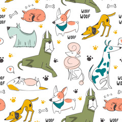 Wall Mural - Hand drawn various cats. Colored vector seamless pattern